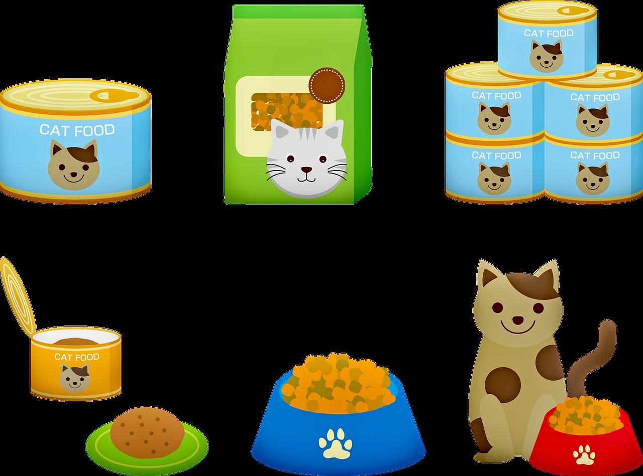 סוגי אוכל לחתולים